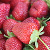Mother's Day 2015 - Strawberry Picking :